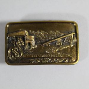 Belt Buckle - Gold Colour